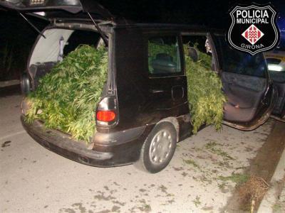 Detienen a cuatro con el coche lleno de marihuana