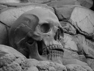 ¿Hay vida después de la muerte?