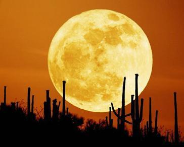 Extraña imagen de la luna